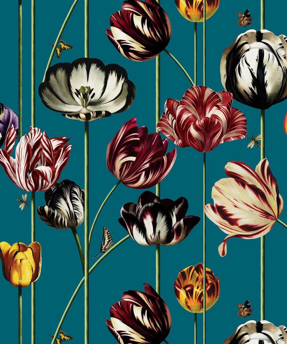 Tulipa Blue Wallpaper