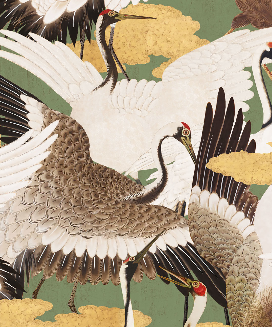 Cranes Midori