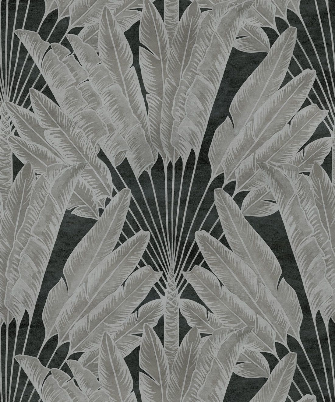 Travellers Palm Wallpaper