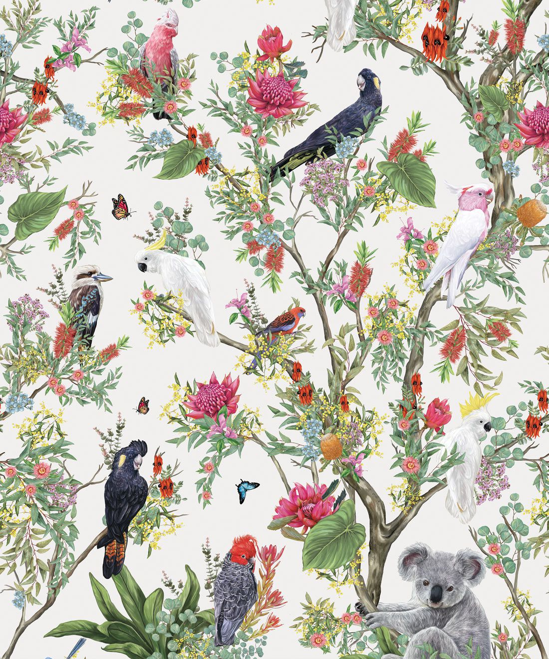 Australia Wallpaper • Cockatoos, Koalas, Parrots, Finches • Milton & King USA • Canvas Wallpaper Swatch