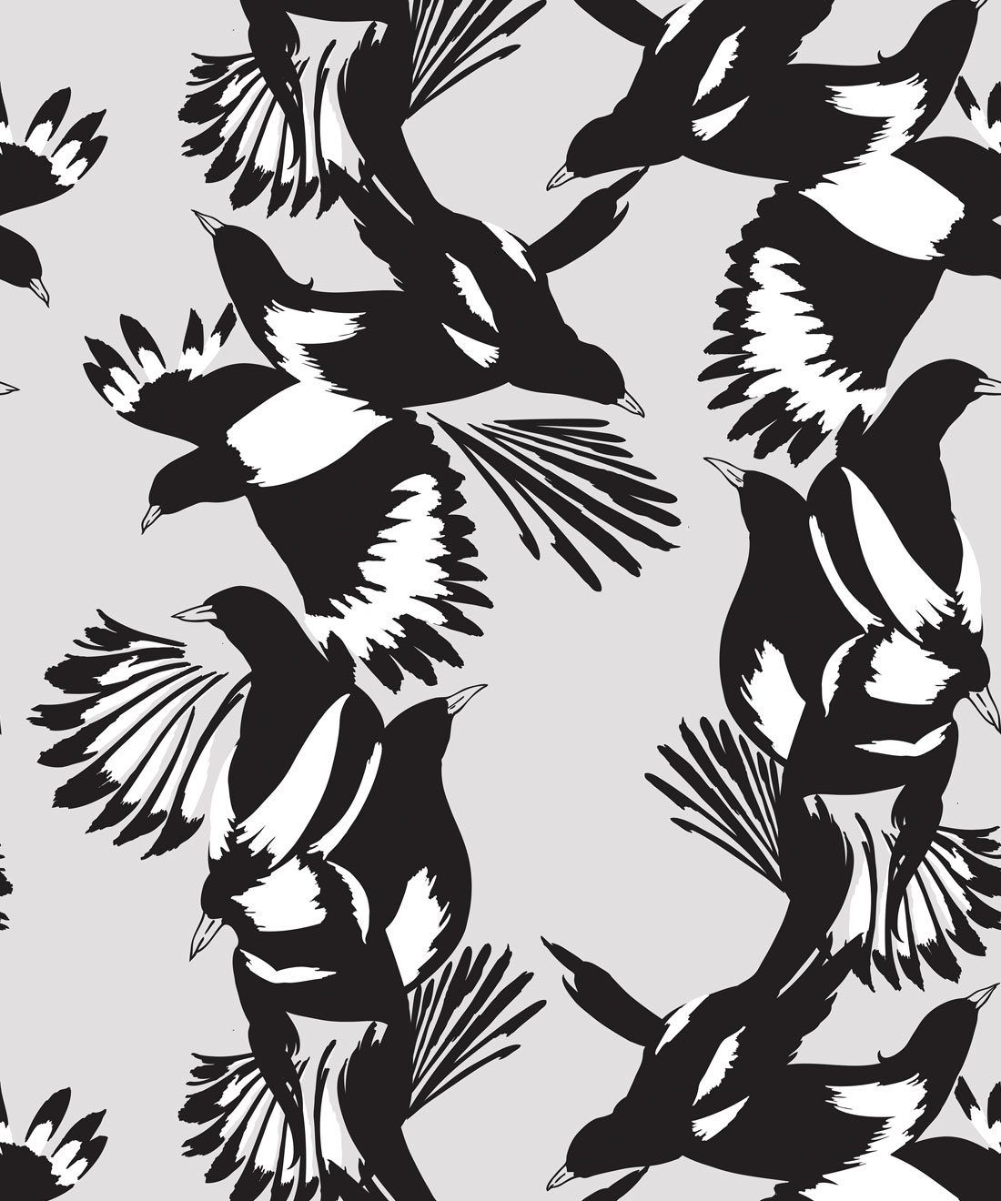 Magpie Wallpaper • Milton & King • Kingdom Home • Bird Wallpaper • Black & White Swatch