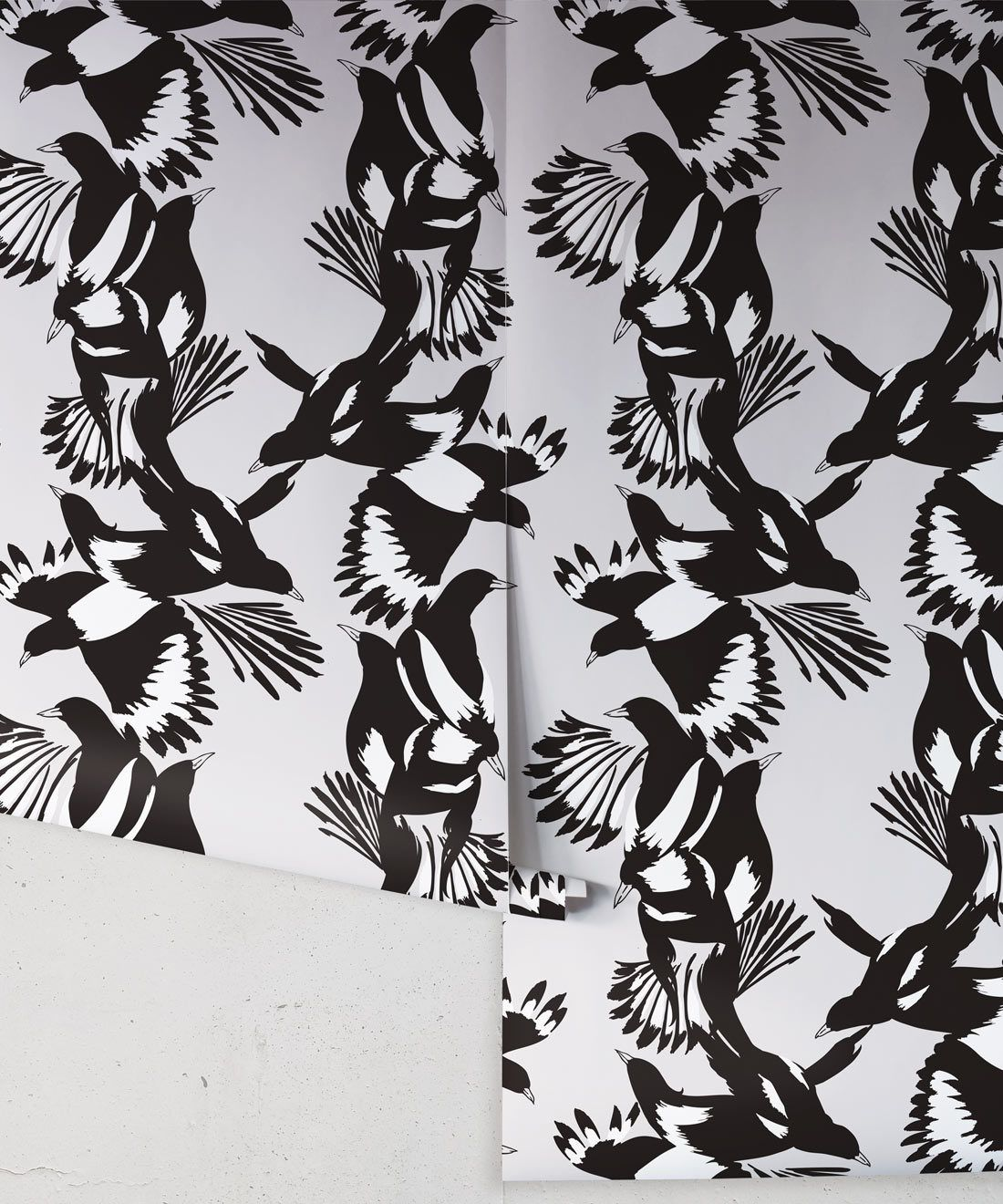 Magpie Wallpaper • Milton & King • Kingdom Home • Bird Wallpaper • Black & White Roll