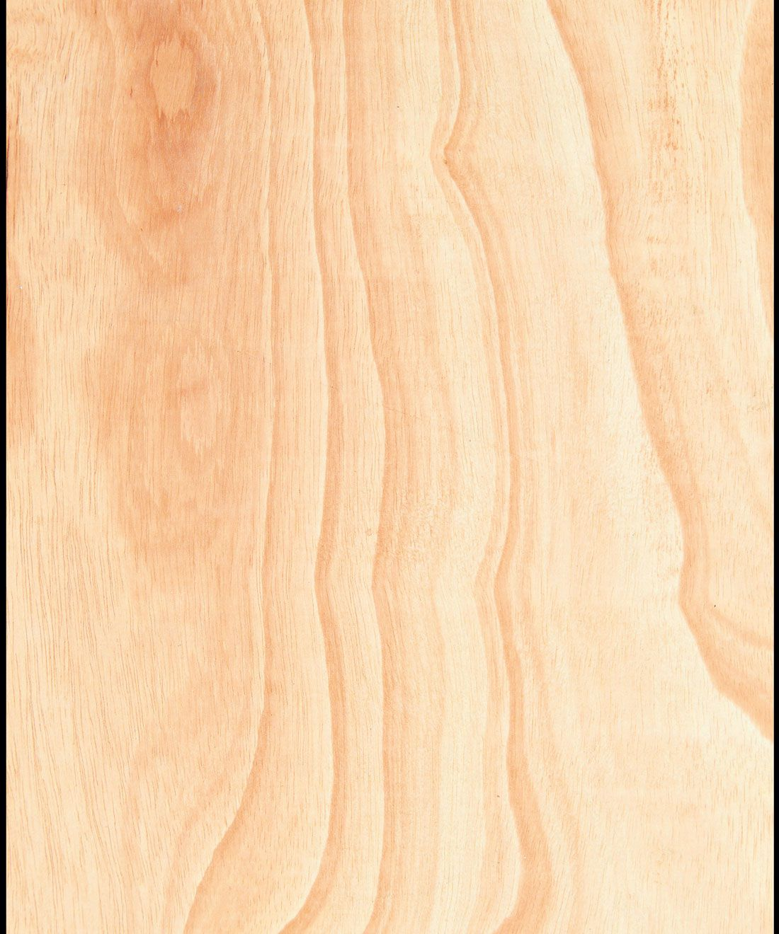 Ply Wood Wallpaper • Light Brown Wallpaper • Wood Grain Wallpaper Swatch
