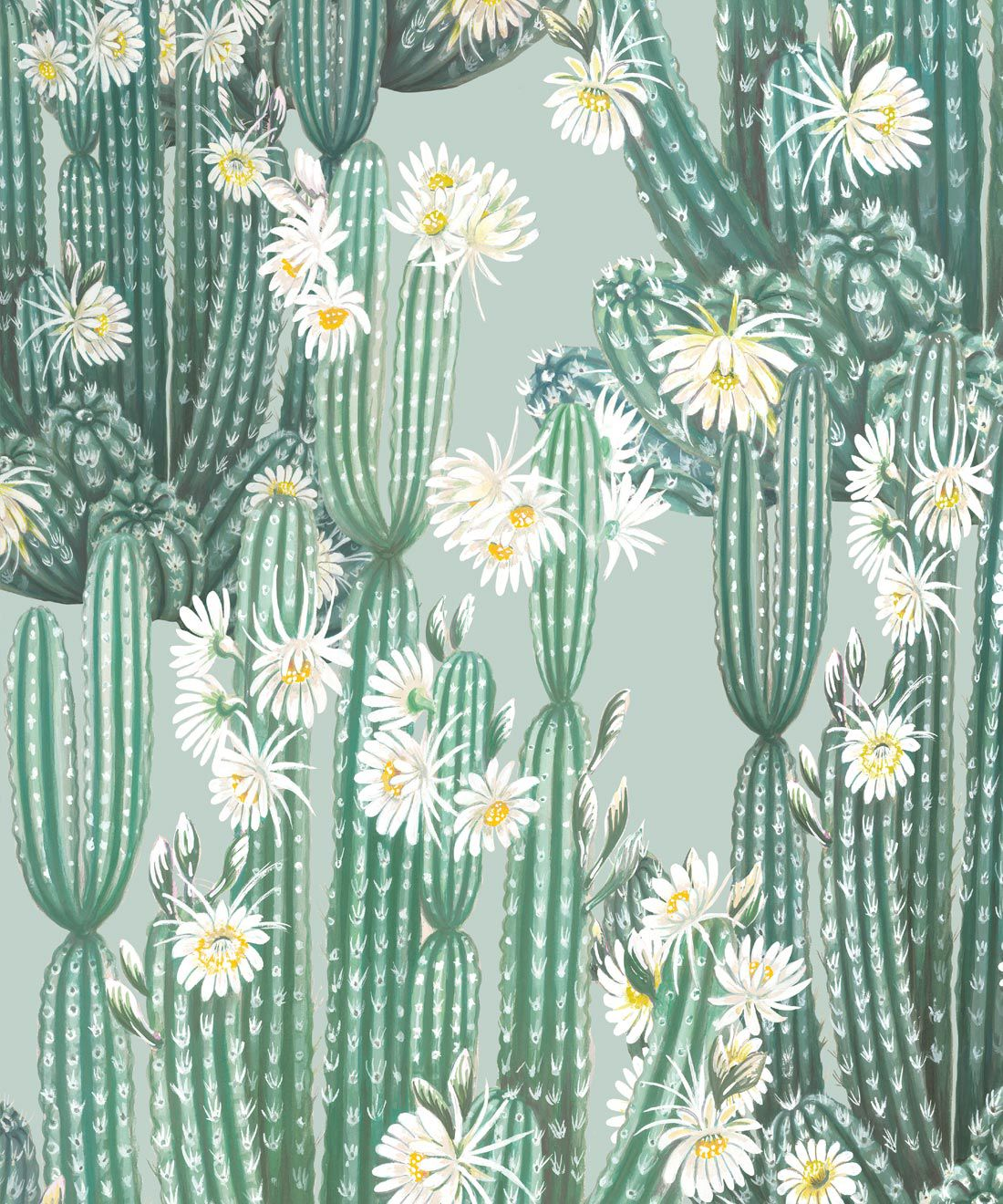 San Pedro Wallpaper Aqua • Cactus Wallpaper • Succulents Wallpaper • Desert Wallpaper Swatch