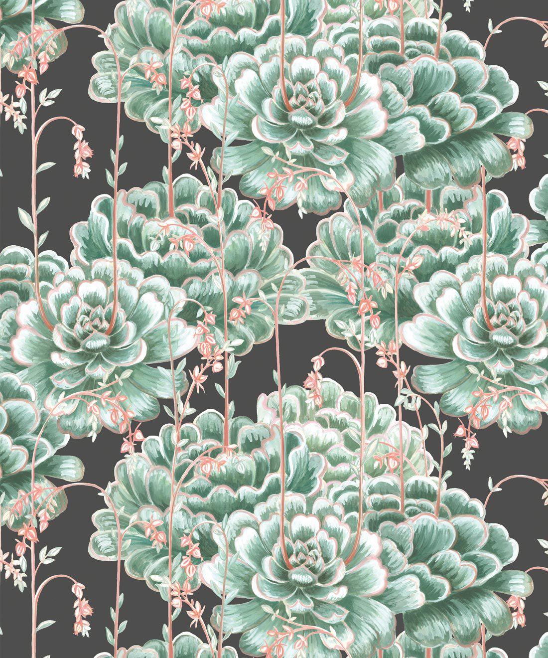 Succulents Wallpaper Green Charcoal • Cactus Wallpaper • Desert Wallpaper Swatch on black background