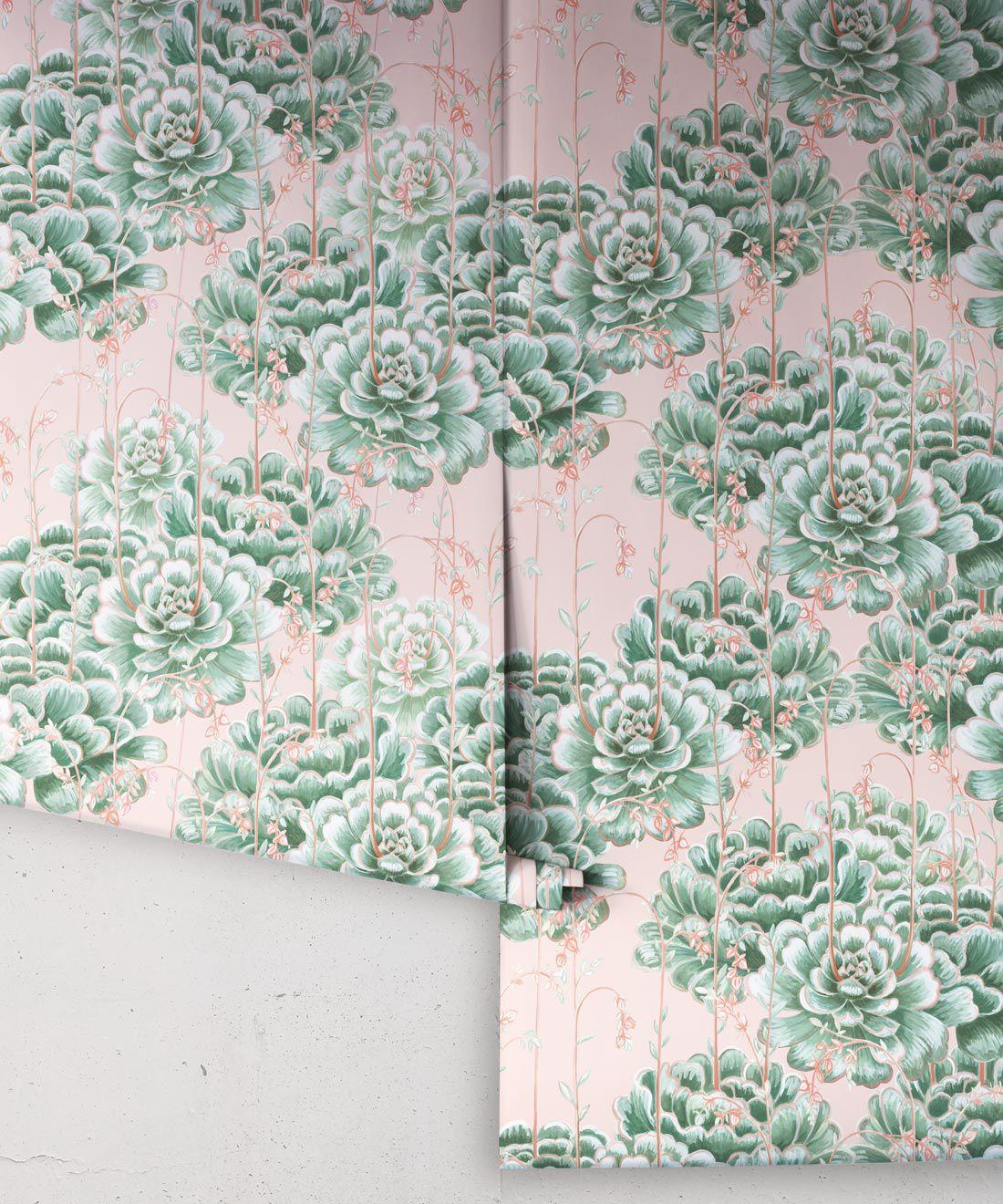 Succulents Wallpaper Green Pink • Cactus Wallpaper • Desert Wallpaper rolls on pink background
