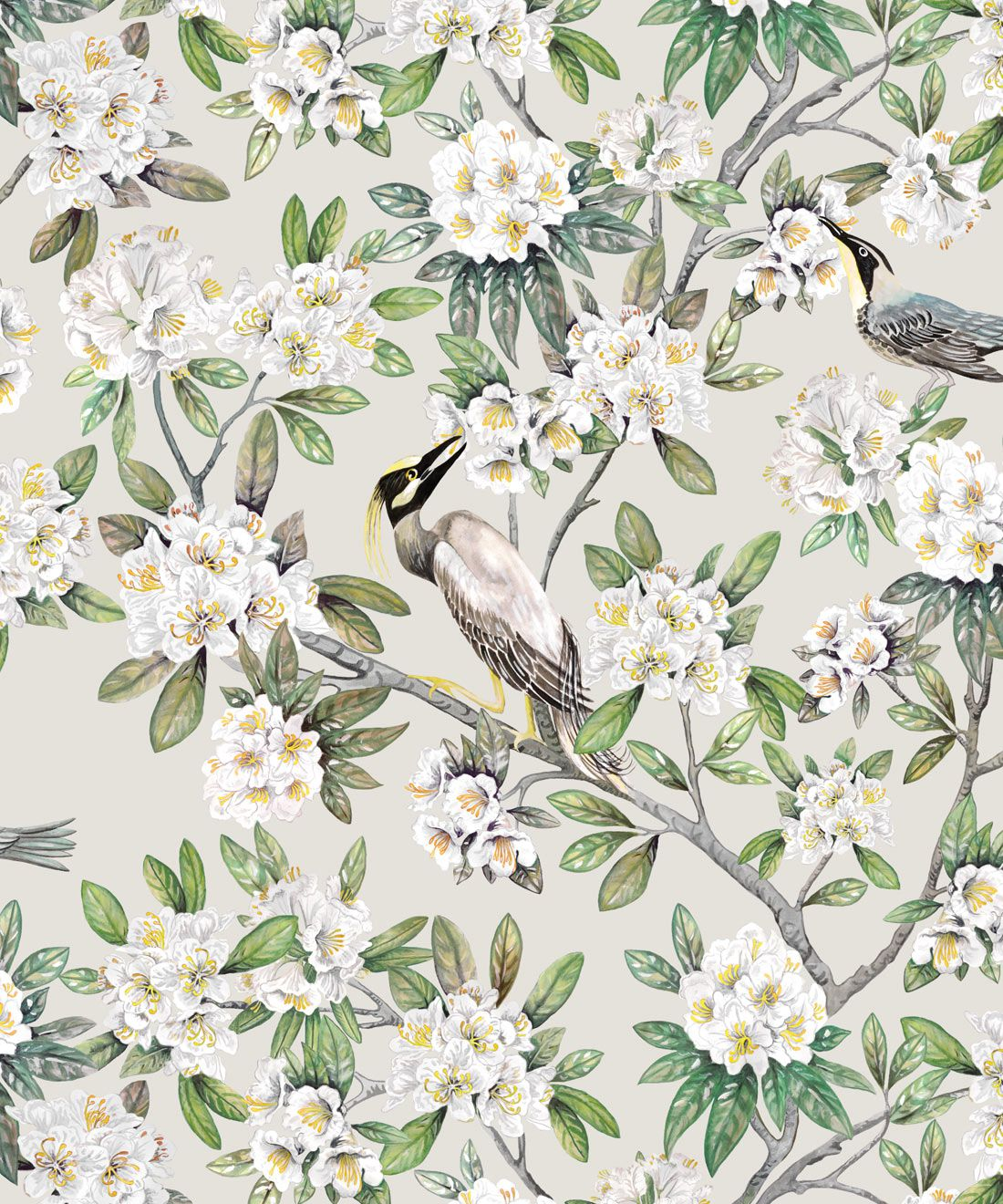 Victoria Wallpaper • Floral Wallpaper • Ivory Wallpaper • Swatch