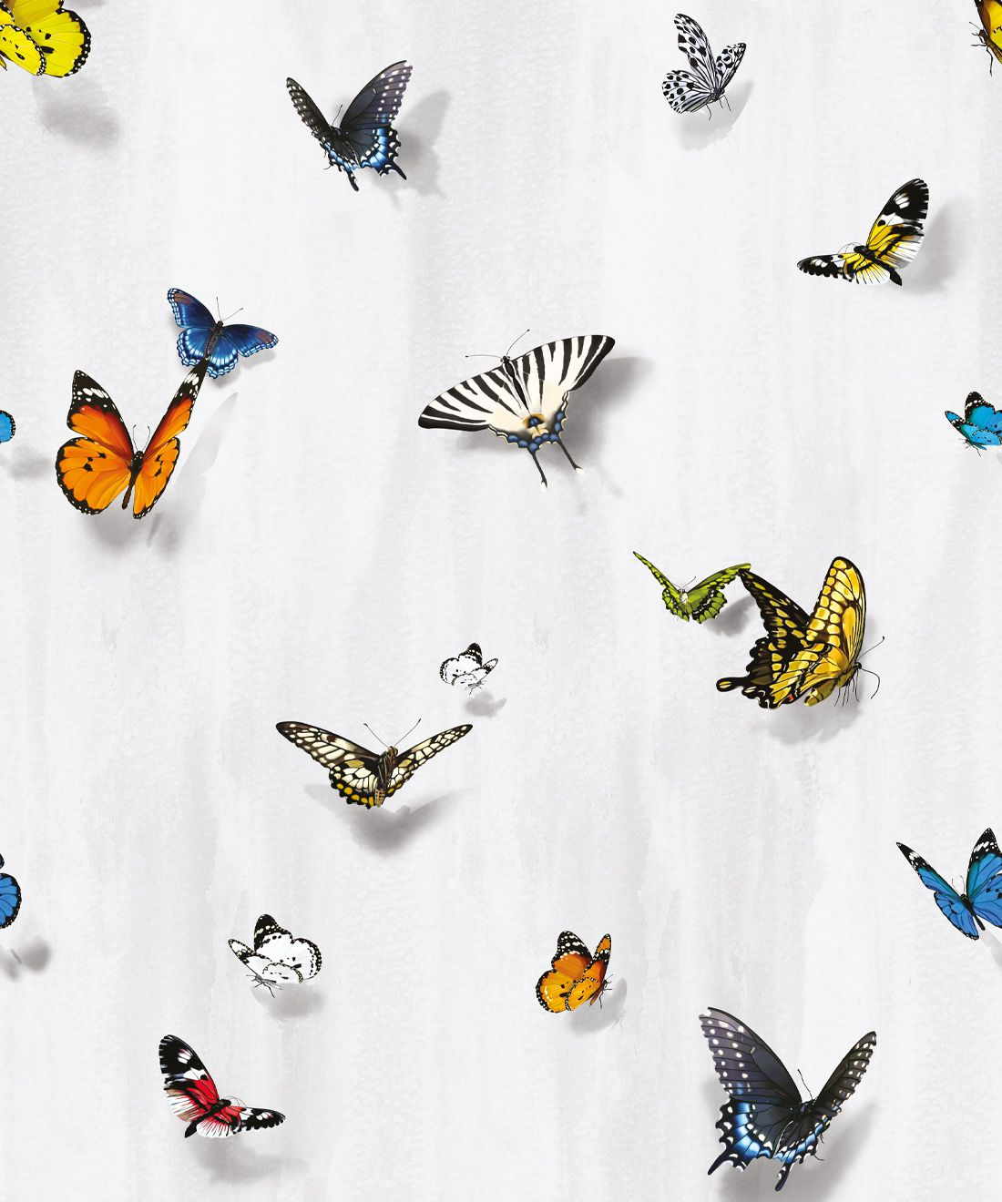 Papilio Wallpaper