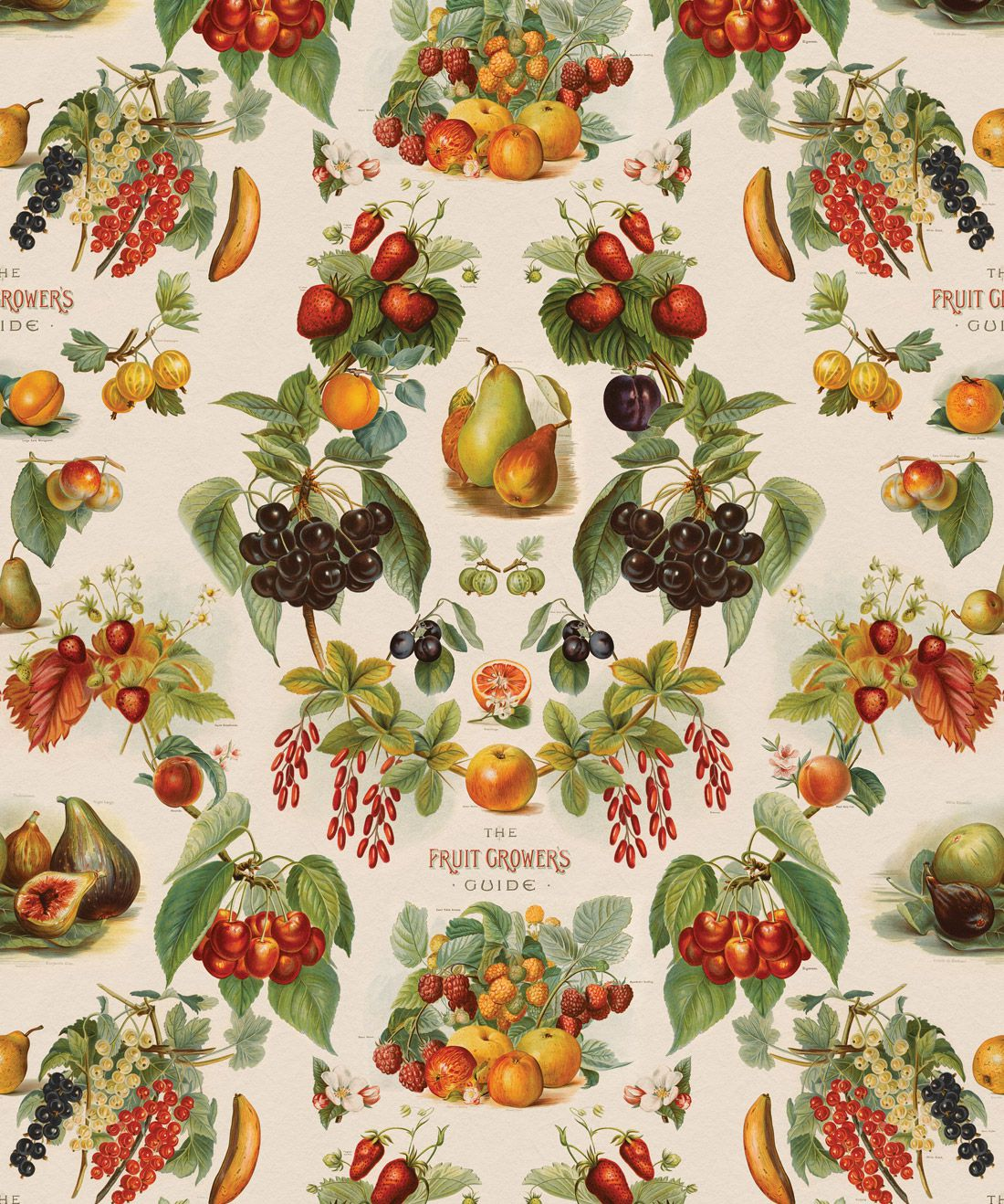 The Fruit Growers Guide Wallpaper