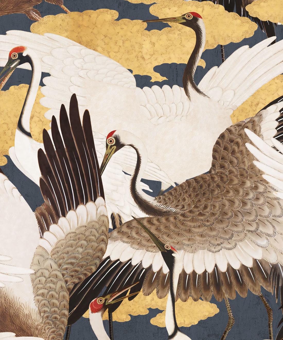 Cranes Sora