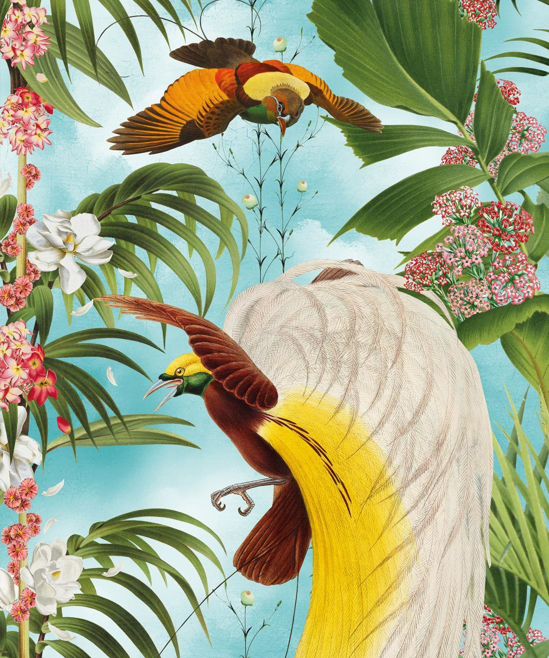 Paradiso Wallpaper with exotic birds and tropical palms
