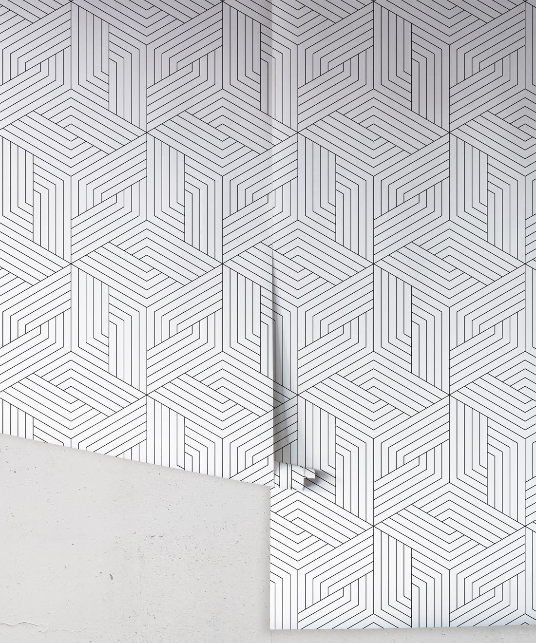 Black Geometric Illusions • Milton & King