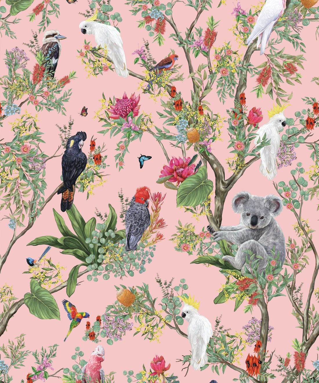 Australia Wallpaper • Cockatoos, Koalas, Parrots, Finches • Milton & King USA • Coral Wallpaper Swatch