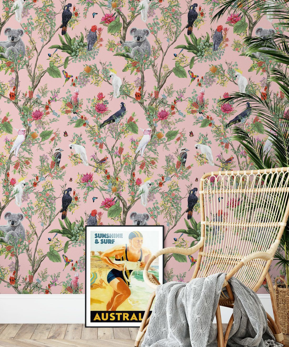 Australia Wallpaper • Cockatoos, Koalas, Parrots, Finches • Milton & King USA • Coral Wallpaper Insitu