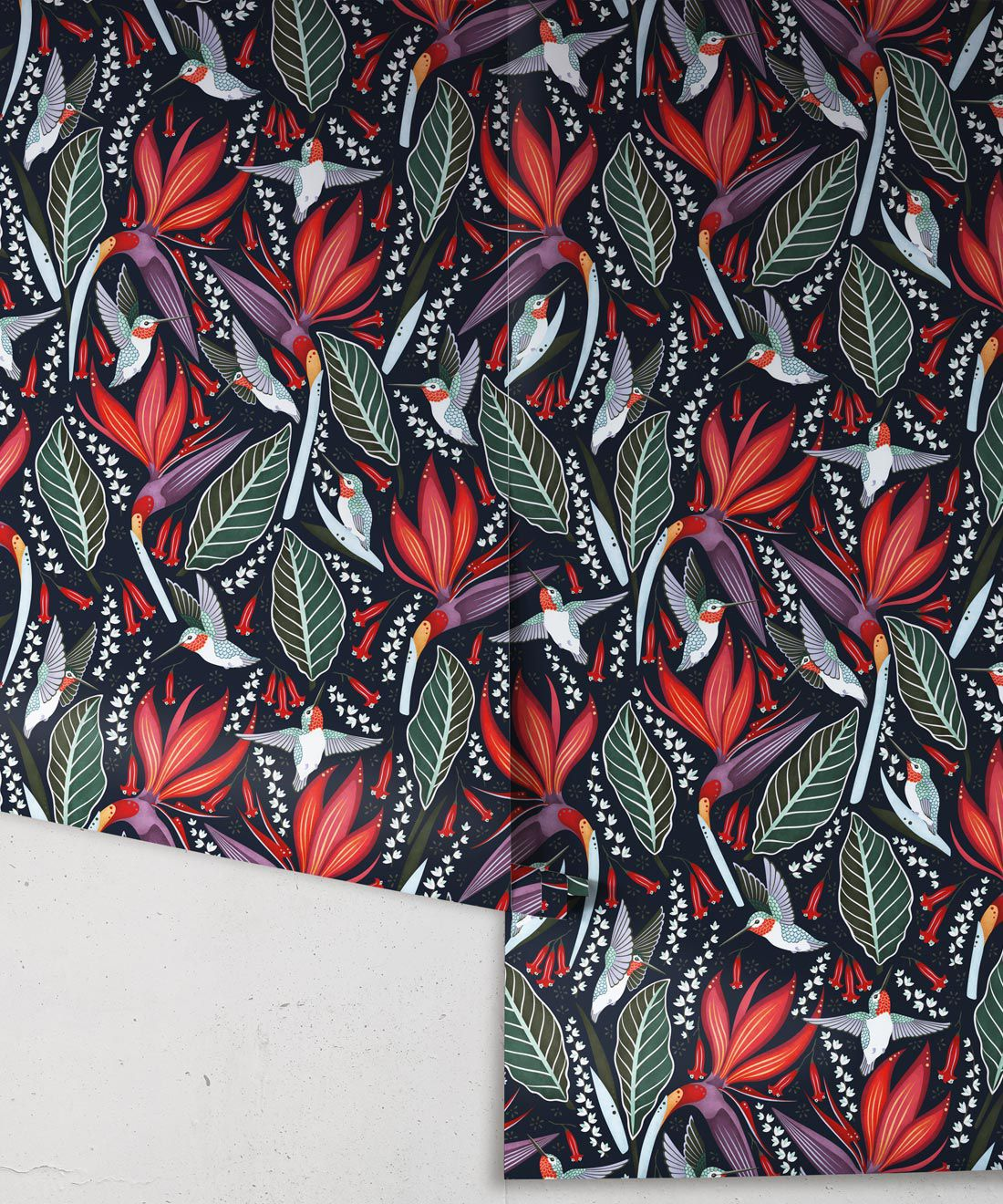 Hummingbird Wallpaper • Birds Of Paradise Flower • Bird Wallpaper • Red Flowers • Black Cherry • Wallpaper Drops