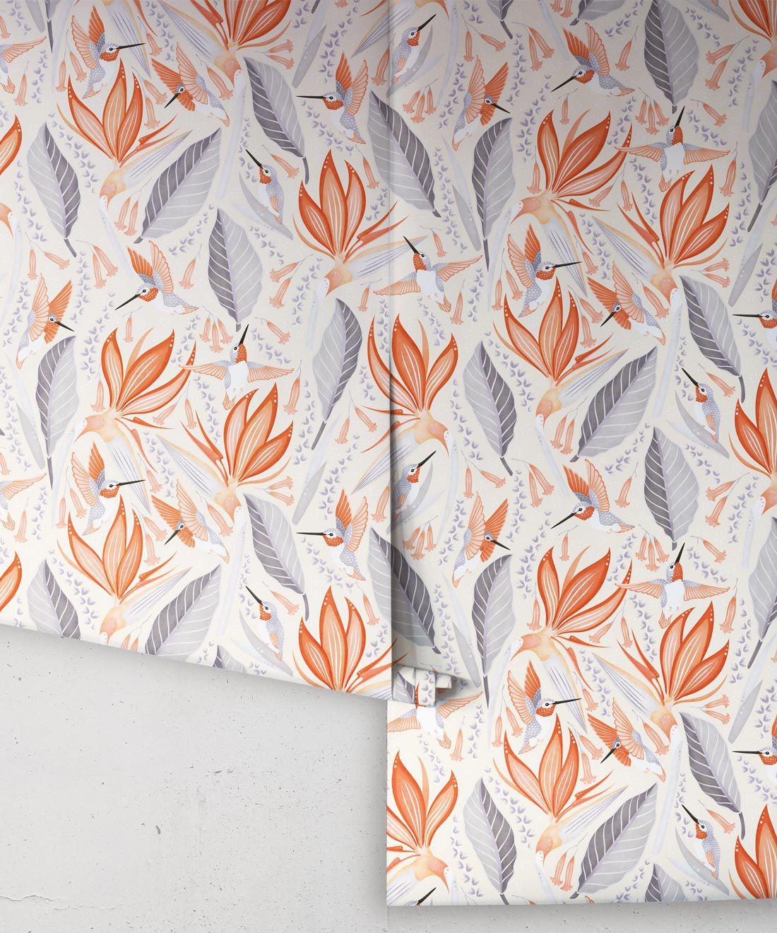 Hummingbird Wallpaper • Birds Of Paradise Flower • Bird Wallpaper Drops