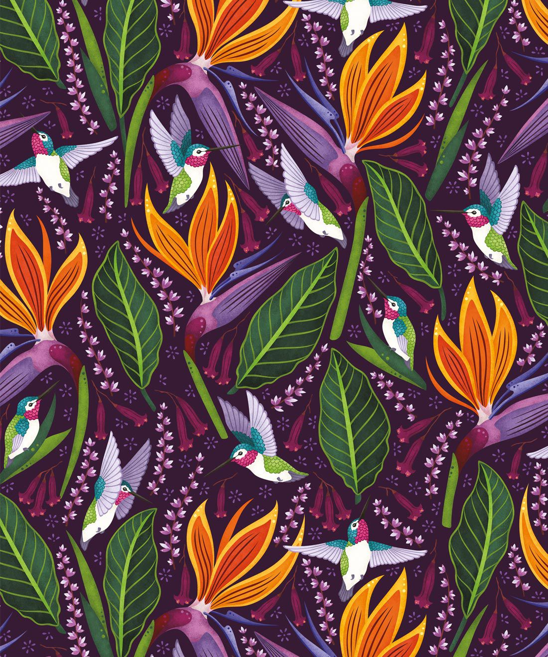 Hummingbird Wallpaper • Birds Of Paradise Flower • Bird Wallpaper • Purple Wallpaper