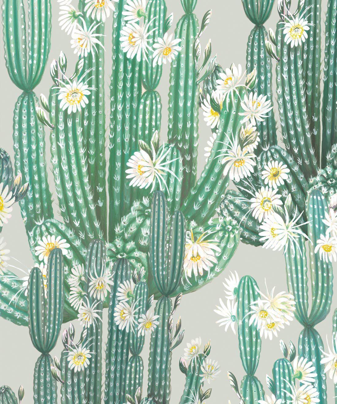 San Pedro Wallpaper Green • Cactus Wallpaper • Succulents Wallpaper • Desert Wallpaper Swatch