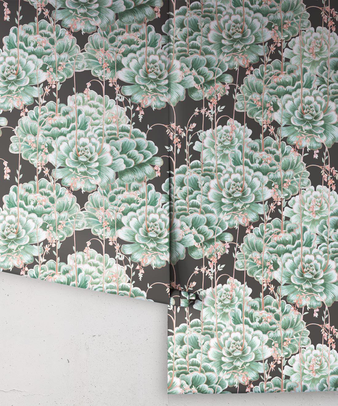 Succulents Wallpaper Green Charcoal • Cactus Wallpaper • Desert Wallpaper rolls on black background