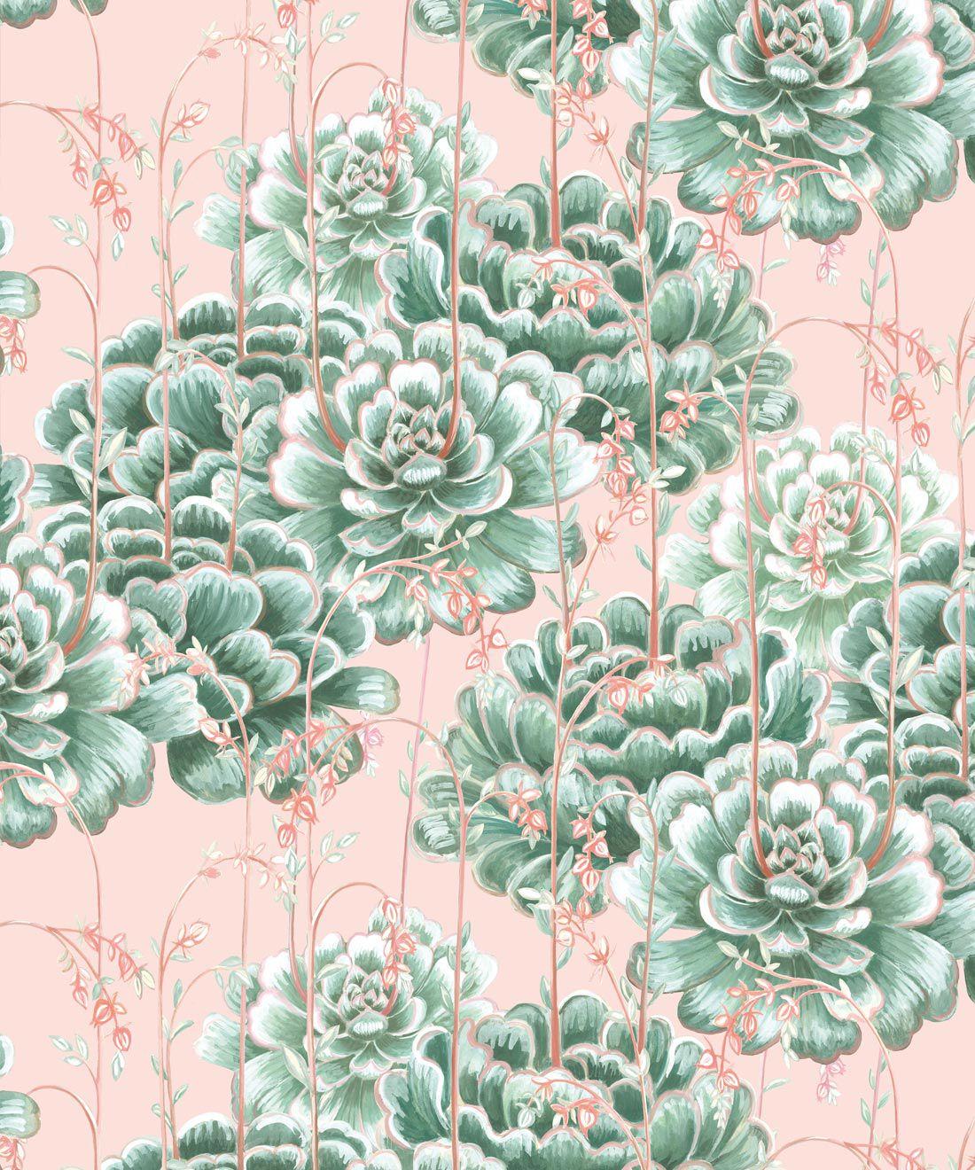 Succulents Wallpaper Green Pink • Cactus Wallpaper • Desert Wallpaper Swatch on pink background