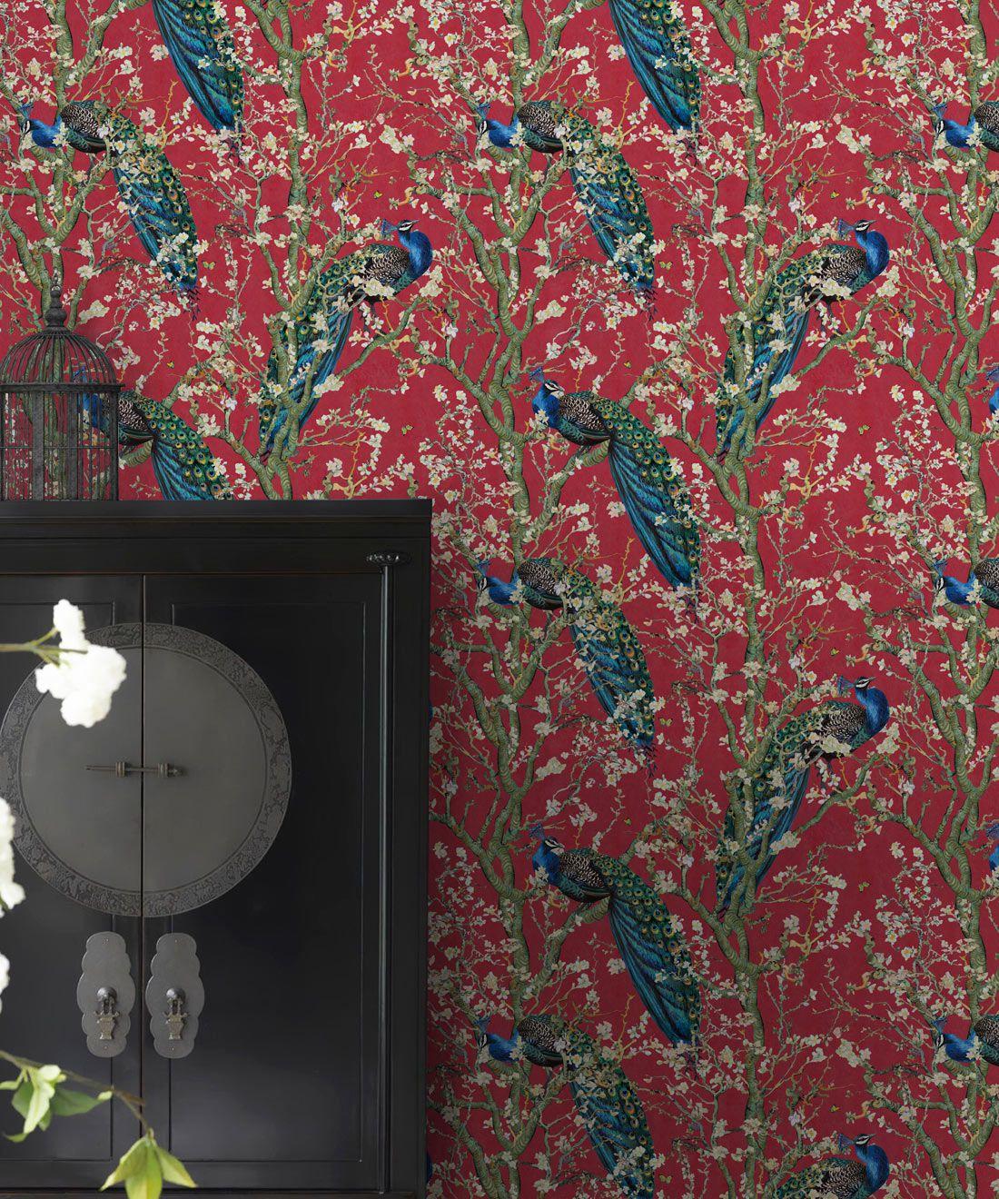 Almond Blossom Wallpaper • Chinoiserie Wallpaper • Wallpaper with Peacocks • Red Lantern Wallpaper •Insitu