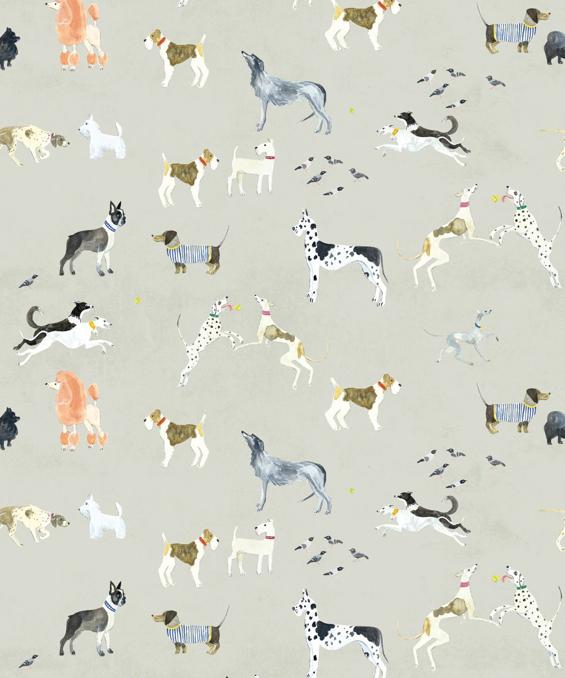 Doggies Wallpaper