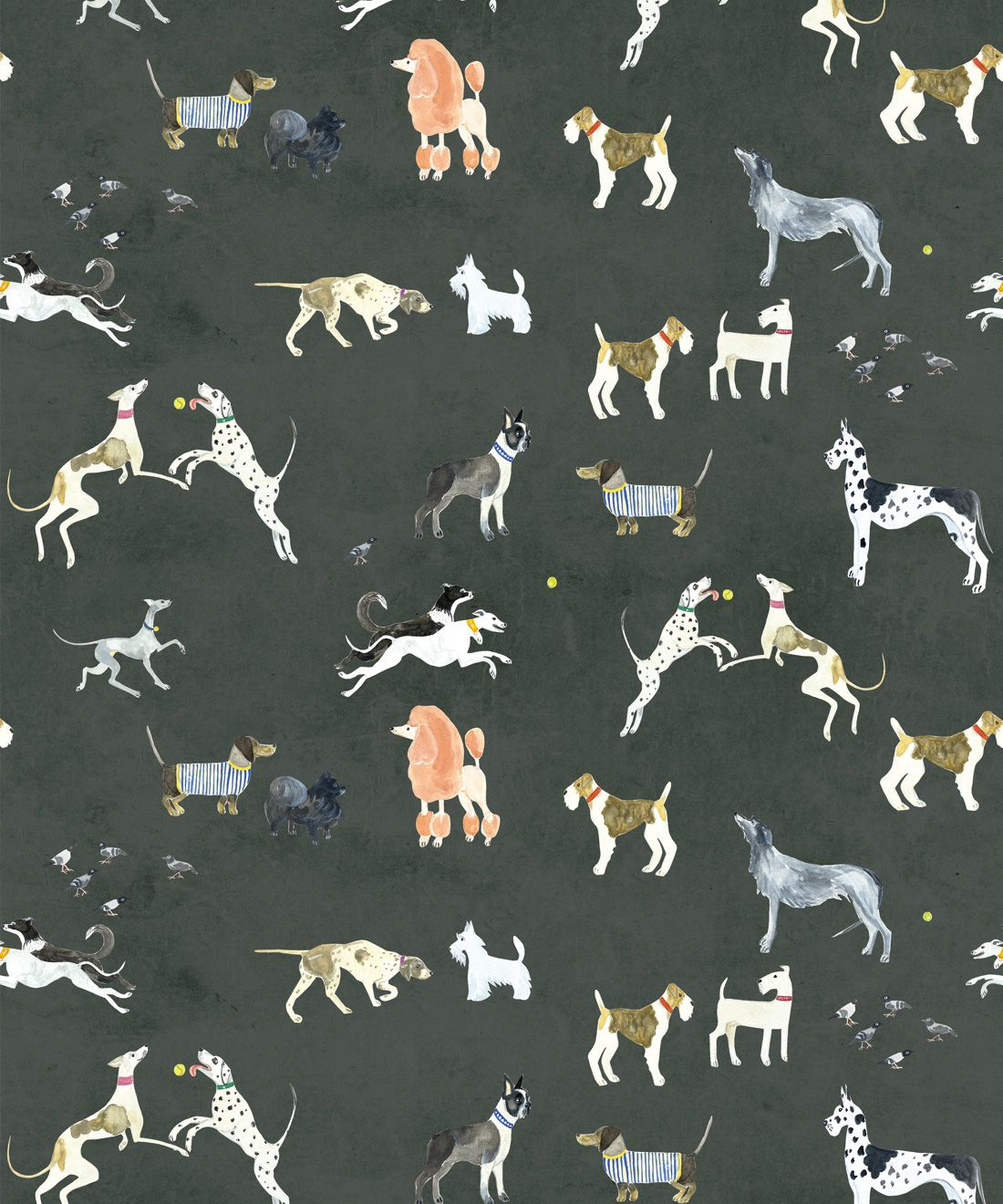 Doggies Wallpaper • Dog Wallpaper • Charcoal • Swatch