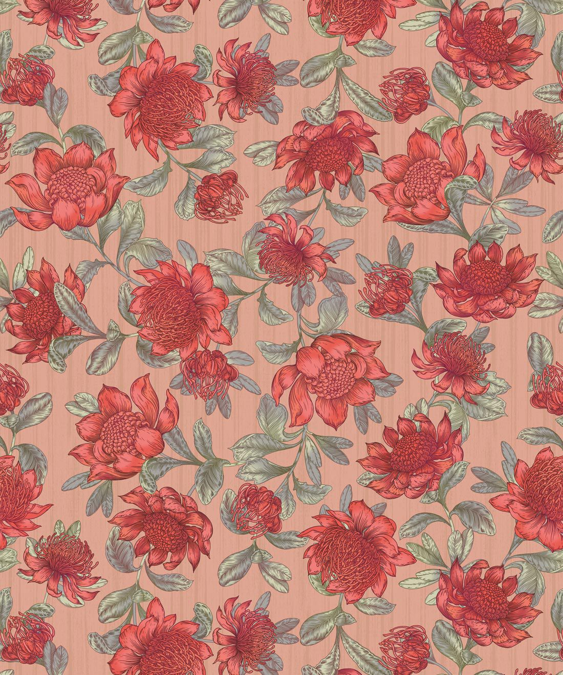 Waratah Wallpaper • Eloise Short • Vintage Floral Wallpaper •Granny Chic Wallpaper • Grandmillennial Style Wallpaper •Blush •Swatch