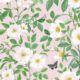 Rosa Wallpaper • Floral Wallpaper • Blush • Swatch