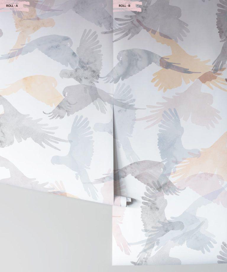 Lorikeets Bird Wallpaper Saltwater