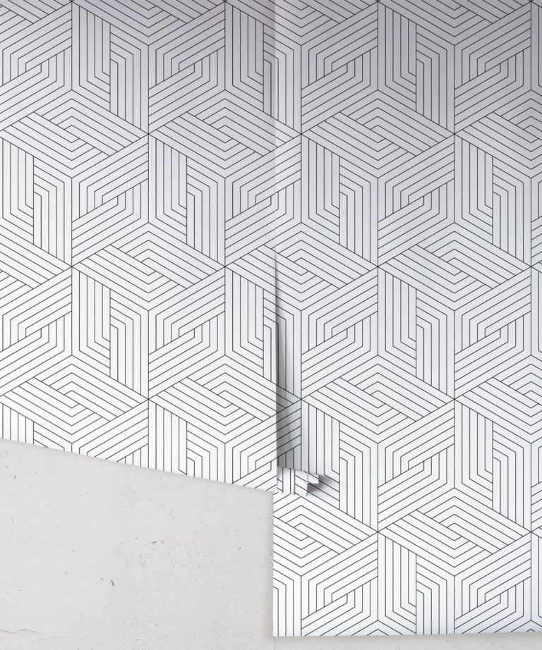 Black Lined Geometric Illusions Wallpaper • Geometric Wallpaper • Milton & King