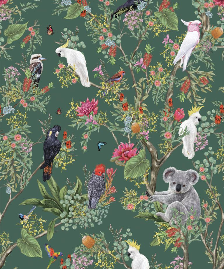 Australia Wallpaper • Cockatoos, Koalas, Parrots, Finches • Milton & King UK • Green Wallpaper Swatch