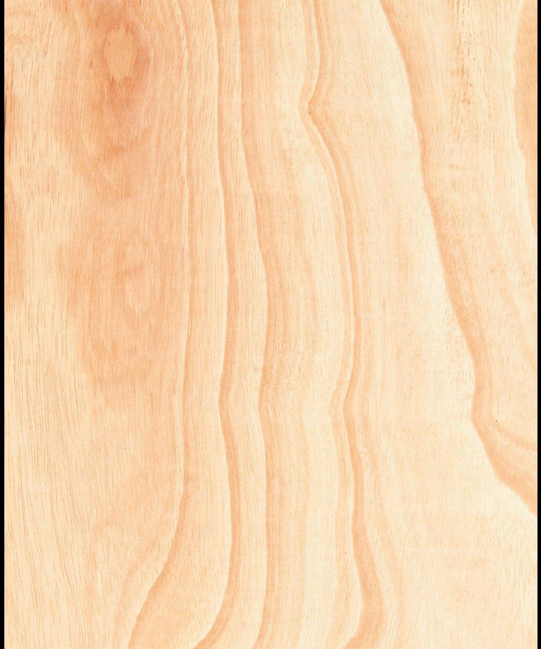 Ply Wood Wallpaper