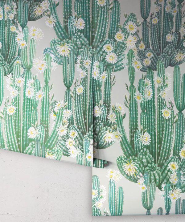 San Pedro Wallpaper Green • Cactus Wallpaper • Succulents Wallpaper • Desert Wallpaper Rolls