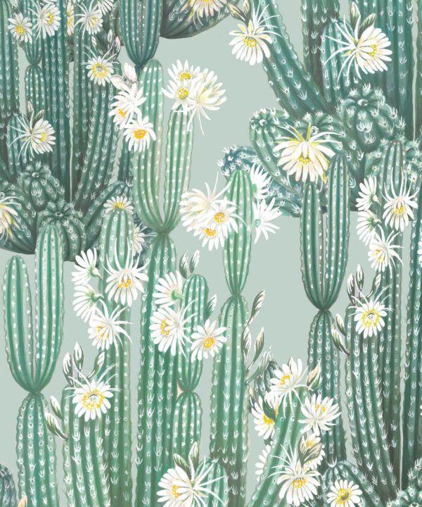 San Pedro Wallpaper Aqua • Cactus Wallpaper • Succulents Wallpaper • Desert Wallpaper Swatch