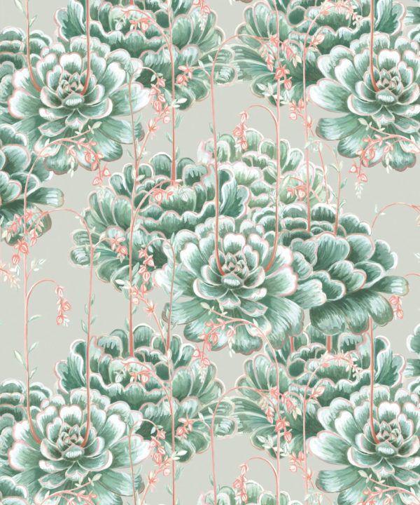 Succulents Wallpaper Green Beige • Cactus Wallpaper • Desert Wallpaper Swatch on grey background