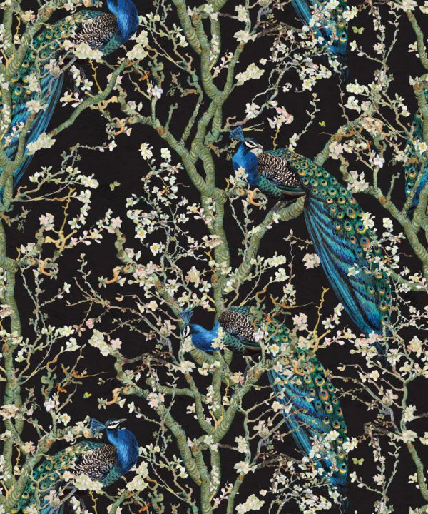 Almond Blossom Wallpaper • Chinoiserie Wallpaper • Wallpaper with Peacocks • Black Night Wallpaper •Swatch