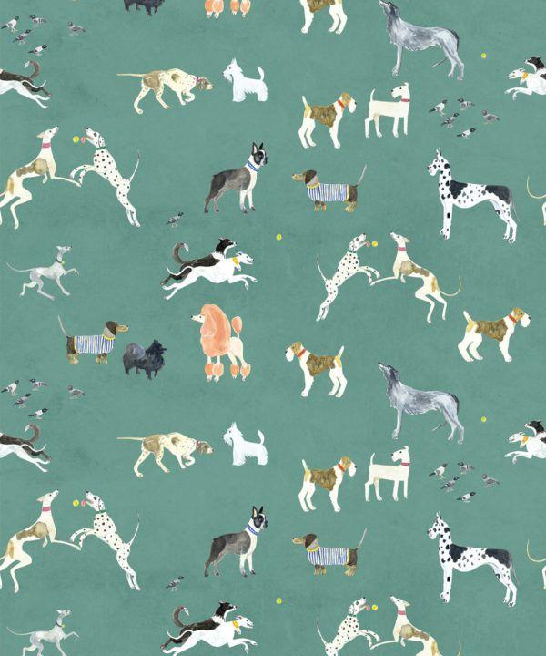 Doggies Wallpaper •Dog Wallpaper •Turquoise • Swatch