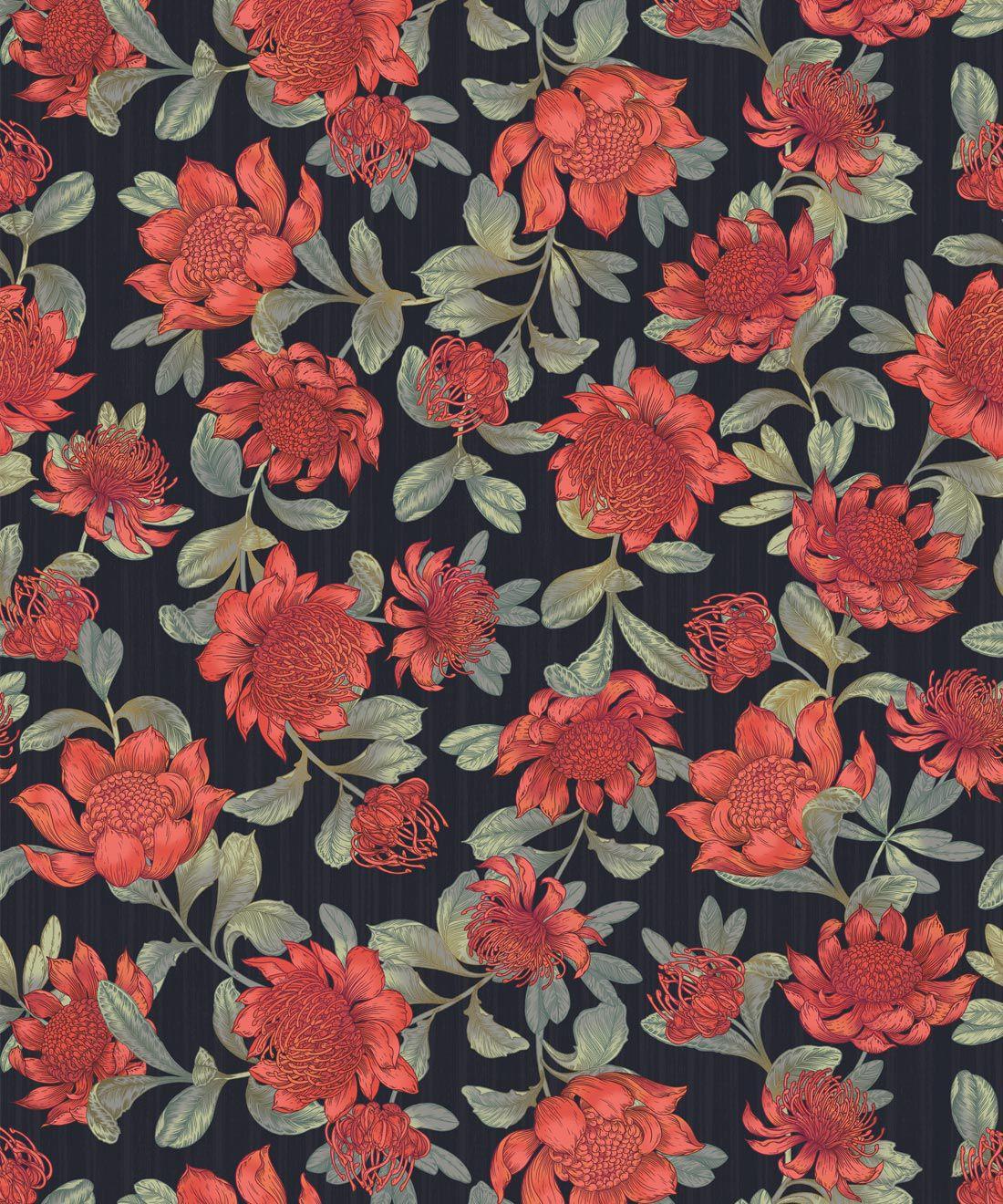 Waratah Wallpaper