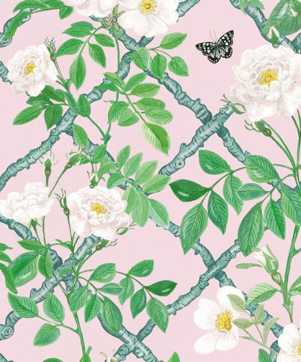 Treilage Wallpaper • Floral Wallpaper • Blush • Swatch
