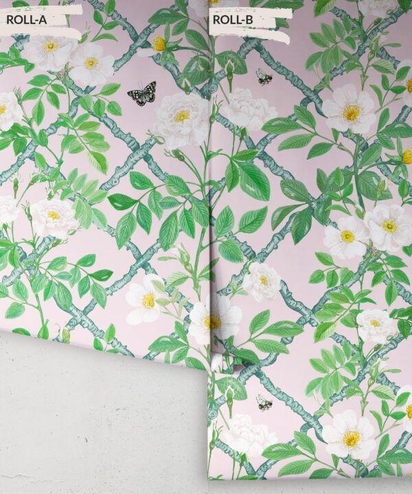 Treilage Wallpaper • Floral Wallpaper • Blush • Rolls