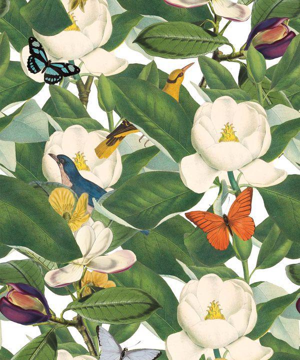 Magnolia Bloom Wallpaper • Floral White Magnolias •Swatch