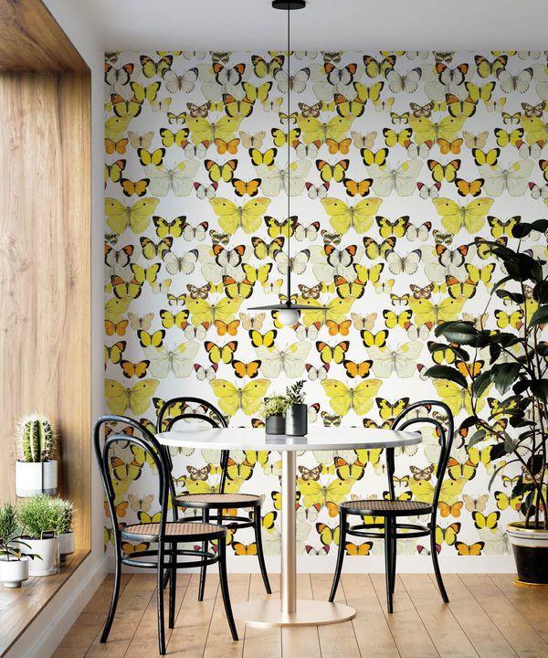 Papillon Medley Wallpaper •Butterfly Wallpaper •Insitu