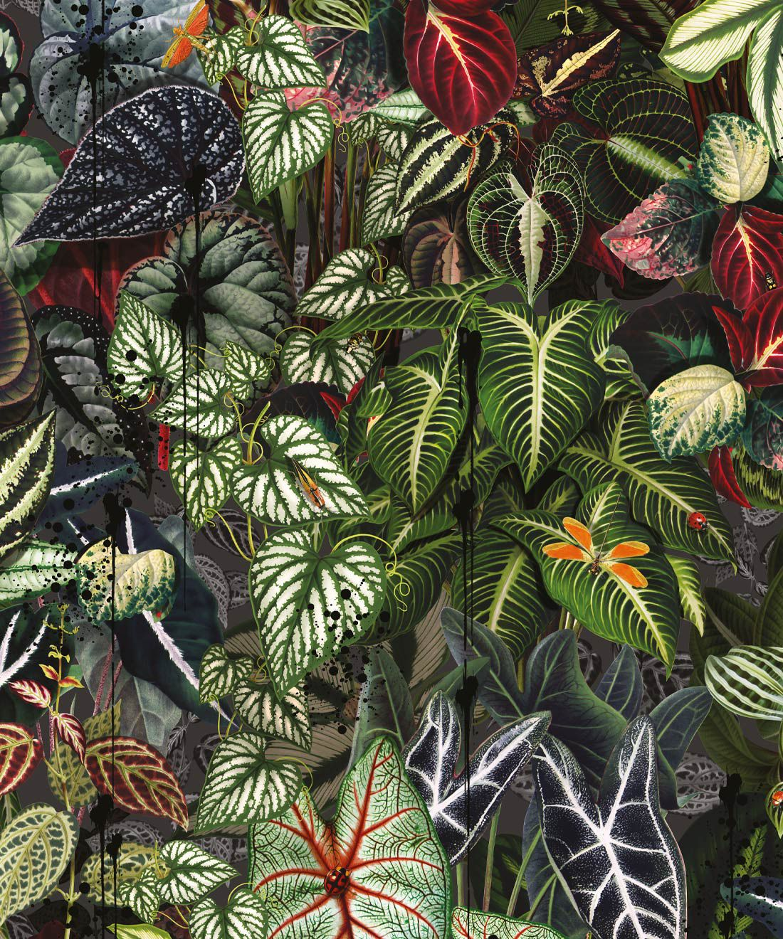 Verde Wallpaper (Two Roll Set)