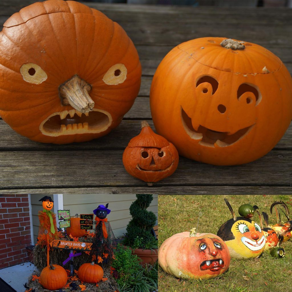 decorated pumpkins for halloween including carved, painted and uncarved