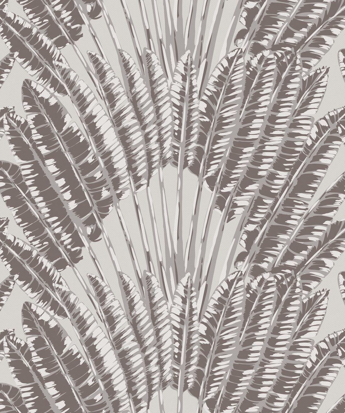 Feather Palm Rock Face