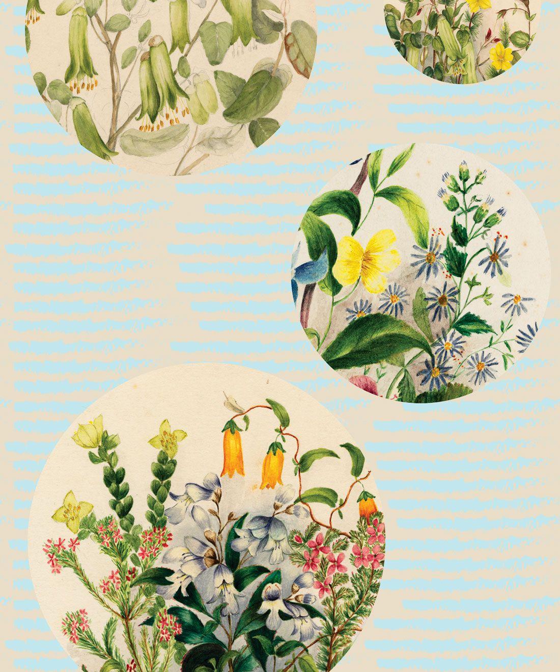Euphemia 5 Wallpaper