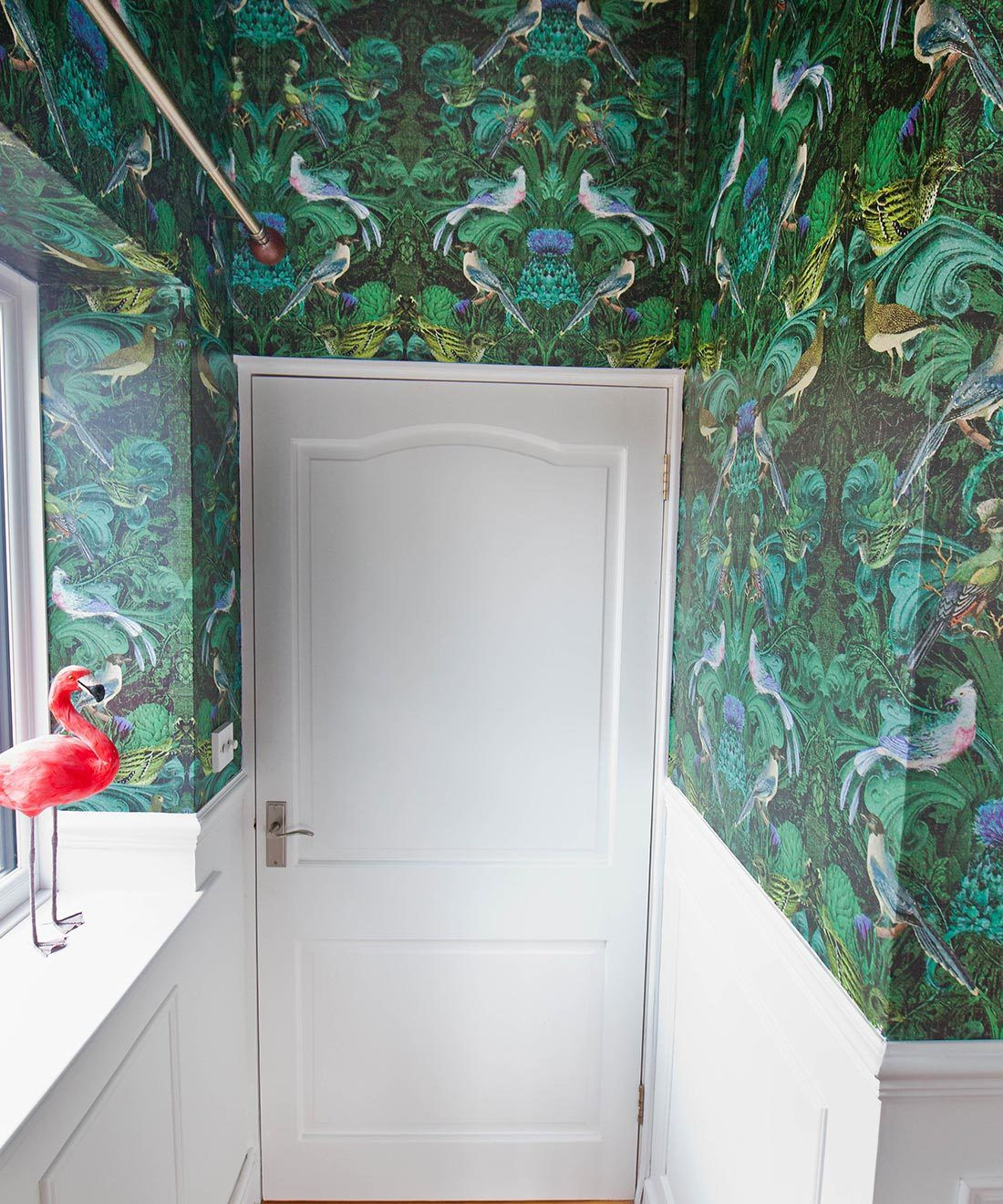 Birdlife Wallpaper • Milton & King