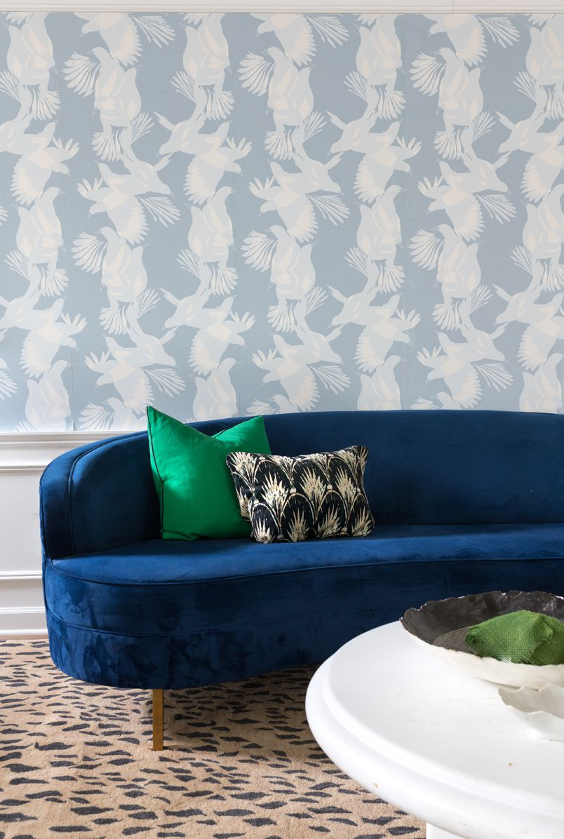 Magpie Wallpaper • Australia Collection by Kingdom Home • Blue Wallpaper • Bird Wallpaper • Photo by Jewel Marlowe • A blue sofa is displayed in front of a wall with blue bird wallpaper on the top half of the wall with wainscotting on the bottom part of the wall.