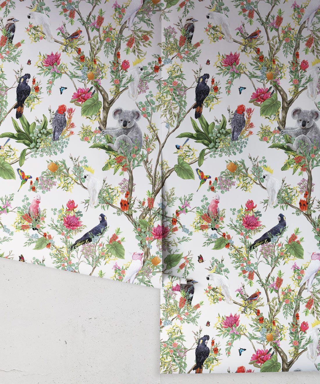 Australia Wallpaper • Cockatoos, Koalas, Parrots, Finches • Milton & King USA • Canvas Wallpaper Roll